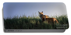 Portable Battery Charger featuring the photograph Red Fox Morning by Brad Allen Fine Art