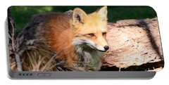 Red Fox On Patrol Portable Battery Charger