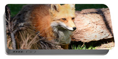 Red Fox On Patrol Portable Battery Charger by Debby Pueschel