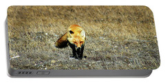 Portable Battery Charger featuring the photograph Red Fox On The Tundra by Anthony Jones