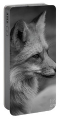 Red Fox Portrait In Black And White Portable Battery Charger