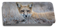Red Fox - San Juan Islands Portable Battery Charger