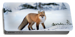 Red Fox Vulpes Vulpes Portrait Portable Battery Charger