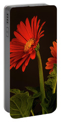 Portable Battery Charger featuring the photograph Red Gerbera Daisy 1 by Richard Rizzo