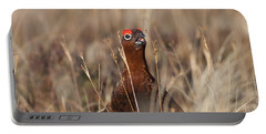 Red Grouse Calling Portable Battery Charger