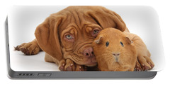 Red Guinea Pig And Dogue De Bordeaux Portable Battery Charger