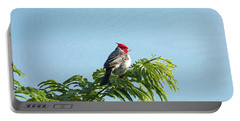 Red-headed Cardinal On A Branch Portable Battery Charger