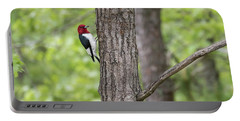 Red-headed Woodpecker 2017-1 Portable Battery Charger by Thomas Young