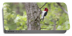 Red-headed Woodpecker 2017-2 Portable Battery Charger by Thomas Young