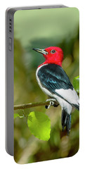 Red-headed Woodpecker Portrait Portable Battery Charger