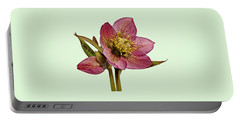 Red Hellebore Green Background Portable Battery Charger