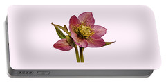 Red Hellebore Transparent Background Portable Battery Charger
