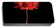 Red Hibiscus Schizopetalus On Black Portable Battery Charger