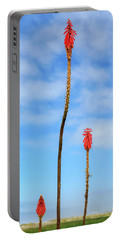 Portable Battery Charger featuring the photograph Red Hot Pokers by James Eddy