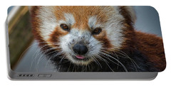Portable Battery Charger featuring the photograph Red Panda Portrait by Mitch Shindelbower