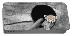 Red Panda Sleeping Portable Battery Charger