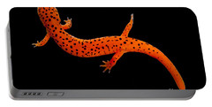 Red Salamander Portable Battery Charger