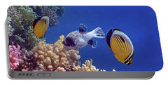 Red Sea Butterflyfish And Pufferfish Portable Battery Charger