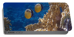 Red Sea Exquisite Butterflyfish  Portable Battery Charger
