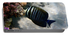 Red Sea Sailfin Tang Makadi Bay Portable Battery Charger