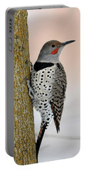 Red Shafted Northern Flicker Portable Battery Charger