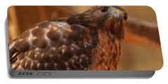Red Shouldered Hawk 1  Portable Battery Charger by Chris Flees