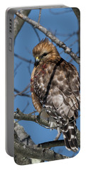 Portable Battery Charger featuring the photograph Red Shouldered Hawk 2017 by Bill Wakeley