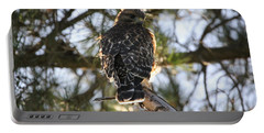 Red Shouldered Hawk Fledgling Portable Battery Charger