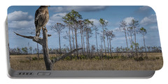 Red Shouldered Hawk In The Florida Everglades Portable Battery Charger