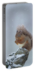 Red Squirrel In A Blizzard Portable Battery Charger