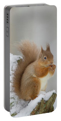 Red Squirrel In The Snow Side On Portable Battery Charger