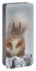 Red Squirrel In Winter Portable Battery Charger