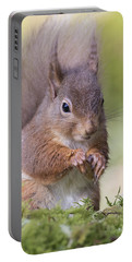 Red Squirrel - Scottish Highlands #1 Portable Battery Charger