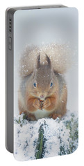 Red Squirrel Nibbles A Nut In The Snow Portable Battery Charger