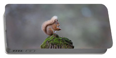 Red Squirrel Peeling A Hazelnut Portable Battery Charger