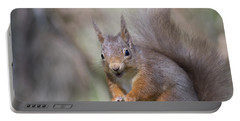 Red Squirrel - Scottish Highlands #26 Portable Battery Charger