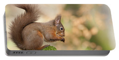 A Moment Of Meditation - Red Squirrel #27 Portable Battery Charger