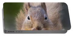 Red Squirrel - Scottish Highlands #28 Portable Battery Charger
