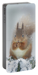 Red Squirrel With Snowflakes Portable Battery Charger