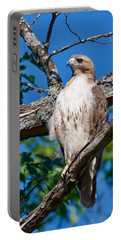 Red-tail Hawk 6813 Portable Battery Charger