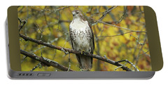 Red Tail Hawk 9887 Portable Battery Charger by Michael Peychich