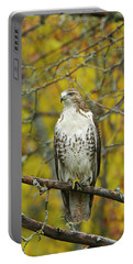 Red Tail Hawk 9888 Portable Battery Charger by Michael Peychich