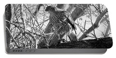Red Tail Hawk In Black And White Portable Battery Charger