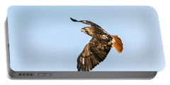 Red-tail Hawk In Flight Portable Battery Charger