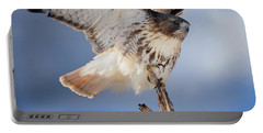 Portable Battery Charger featuring the photograph Red Tail Hawk Perch by Bill Wakeley