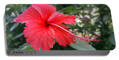 Red-tailed Flower Portrait Portable Battery Charger