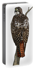 Red-tailed Hawk - Color Portable Battery Charger