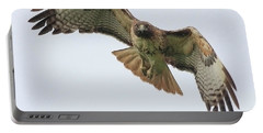 Red Tailed Hawk Finds Its Prey Portable Battery Charger