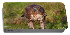 Red-tailed Hawk Hunting Bugs Portable Battery Charger