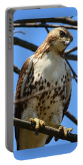 Red-tailed Hawk Portable Battery Charger